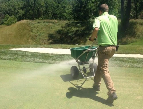 Top dressing for success